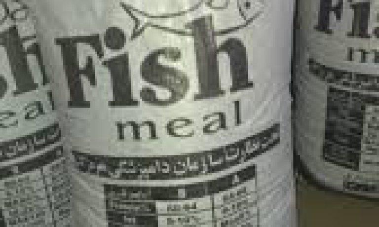 فروش پودر ماهی خالص جنوب مرغوب