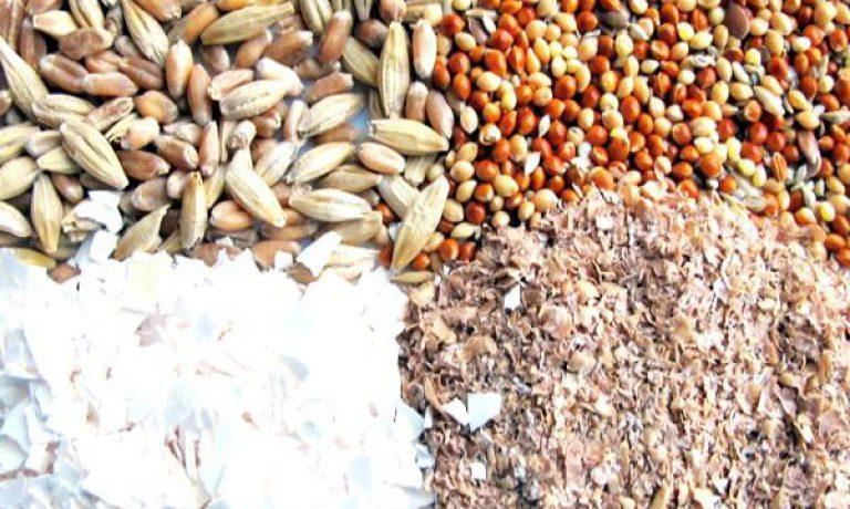 تولید مکمل خوراک دام | شرکت توزیع کننده انواع مکمل
