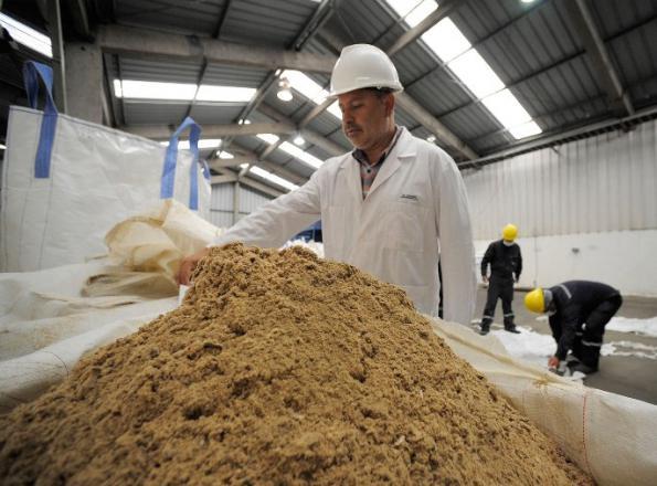 تولید پودر ماهی خالص